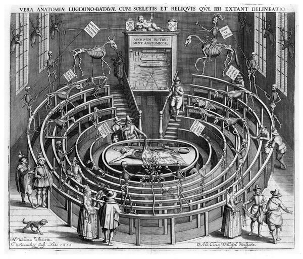 @sciencemuseum We'd add a Renaissance anatomy theatre to #MyMuseum In places like this modern medicine was born! http://t.co/GDNEhp0yf6
