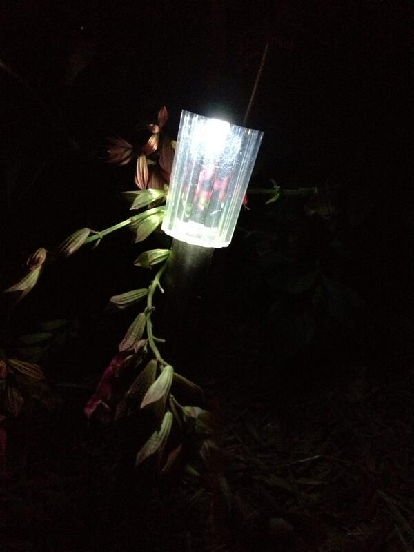 Can't turn off solar garden lights for #earthhour tonight 8:30 to 9:30 pm @abcnews http://t.co/t50teoGmGG
