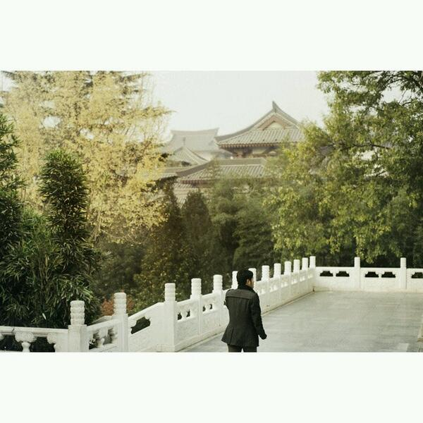 Check out this great shot of Xi'An!   Photo from http://t.co/EUW5waRRgf   #china #xian #wall   Airchina.se http://t.co/ucFHRKSPC7