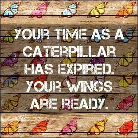 Your time as a caterpillar has now expired.  Get your wings on and fly. http://t.co/6q0TiRlG61