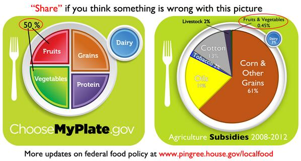 From my TED talk: myplate v. ag subsidies. something wrong with this picture? #mepolitics http://t.co/cAEaYKlhso http://t.co/DHcPNaaQti