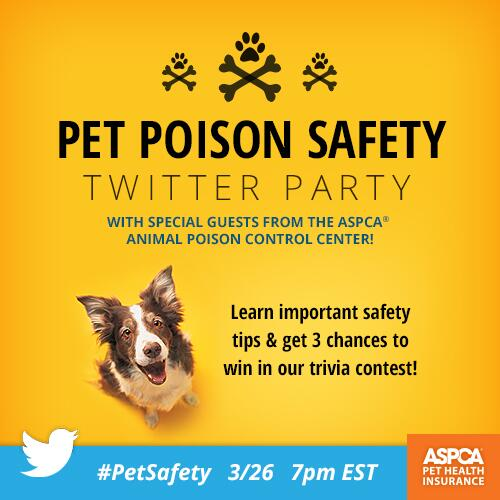 This is today - 7pm EST RT @ASPCAPetIns: Pet Poison Safety Twitter Party #PetSafety http://t.co/NlbPSg5XaT