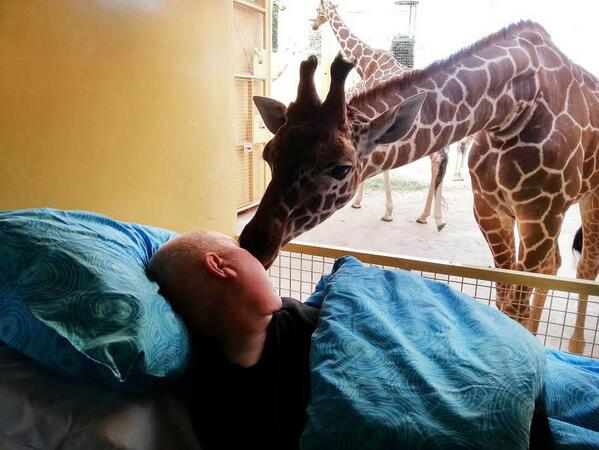 A dying man got one final goodbye from the animals he spent his entire life working with http://t.co/a8Pd1lzH7u http://t.co/nqMoOOQYQd