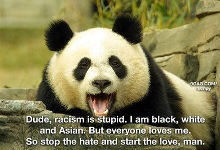 Love this:) Racism is stupid, to find out why check out the Panda:) http://t.co/7Xx9cxA02a