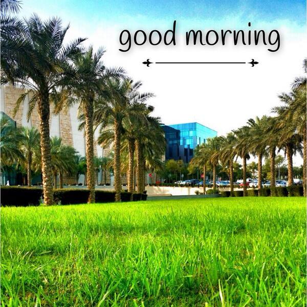 صبحكم الله بالخير http://t.co/bGulJwpNyJ