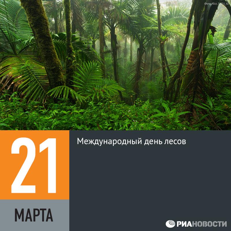 Февраля, открытка с международным днем лесов