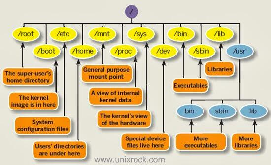 Simple diagram explaining the Linux file system structure pic.twitter.com/kj8xFaCkZJ
