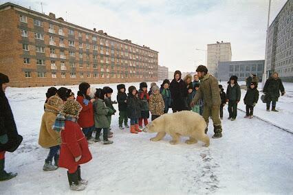 俄罗斯一所学校上课,老师把北极熊弄过来跟大家玩! #战斗民族 http://t.co/I5sYNU6iOp