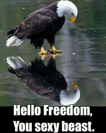 Hahaha ooh man this made me laugh. #merica http://t.co/ypExxdWsCh