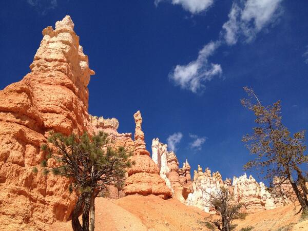Utah's National Parks keep getting better and better! @BryceCanyonNPS #roadtrip #visitutah http://t.co/5qJN0XIY7q