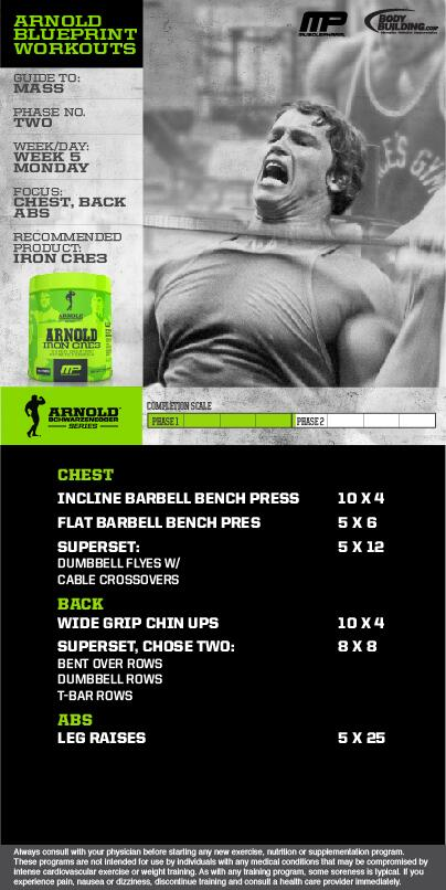 Musclepharm on twitter workout of the day arnold musclepharm on twitter workout of the day arnold blueprint to mass phase 2 chest back and abs brought 2 u by bodybuildingcom malvernweather Gallery