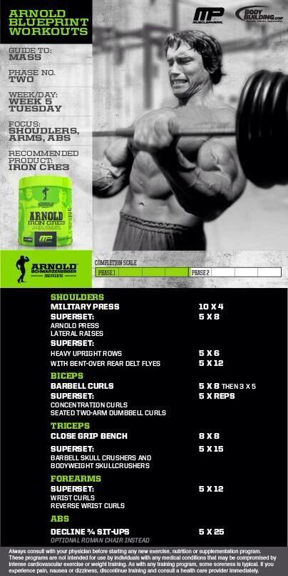 Musclepharm on twitter workout of the day arnold blueprint musclepharm on twitter workout of the day arnold blueprint to mass phase 2 shoulders arms abs brought 2 u by bodybuildingcom malvernweather Choice Image