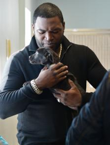 Twitter / davidortiz: Have you shared your dog's ...