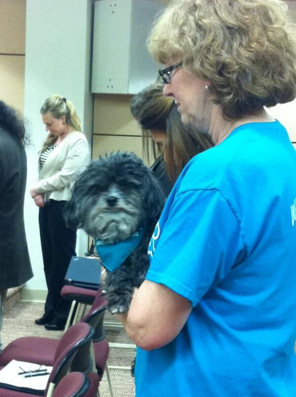 Charlie is very attentive during the invocation. @ the #Pottstown council meeting. @MercuryX http://t.co/wGOm5ajz6L