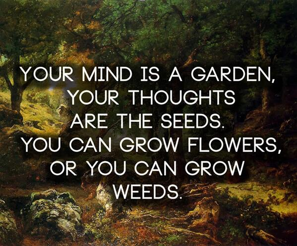 Your mind is a garden, your thoughts are the seeds... #consciousness #mindfulness http://t.co/RiNfVDo5rE