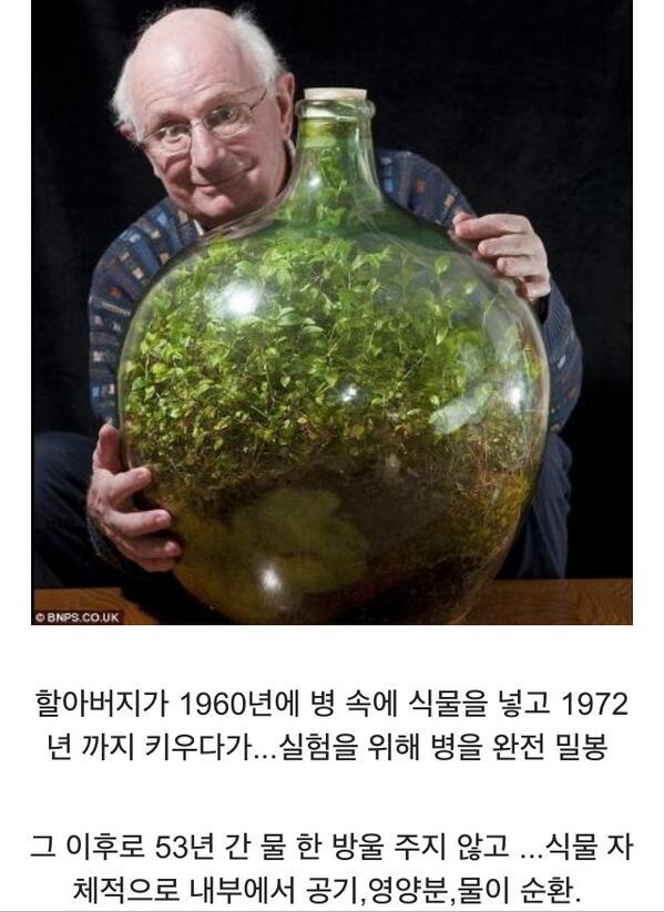완벽한 미니 생태계 http://t.co/DENrwlP7o5
