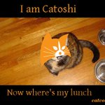 Image for the Tweet beginning: @CatcoinOfficial #Catoshi wants his lunch