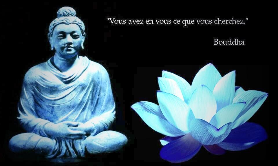 Twitter / Arkhangael: Do not let the behavior of ...
