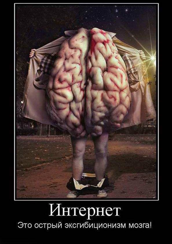 картинки мужские мозги приколы отчете