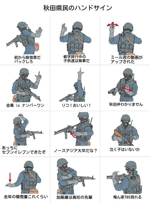 秋田県民のよく使うハンドサイン一覧 pic.twitter.com/PeIewsjOxN