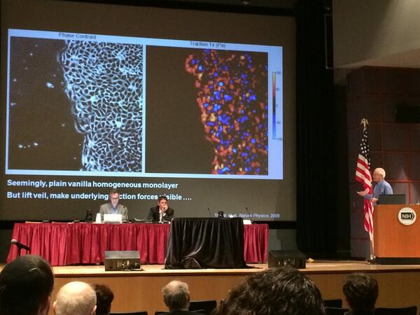 First session! Dr. Jeffrey Fredberg discussing intercellular forces #PhysOnc http://t.co/sN6wvq1JtD