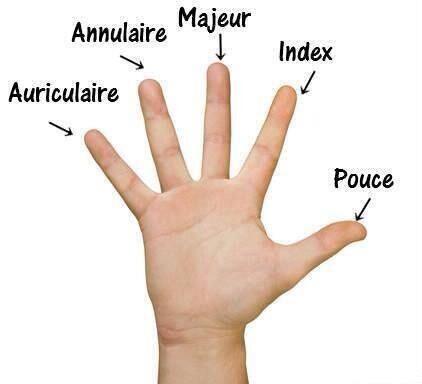 doigt(ドワ)指の名前♡  プス(親指) アンデックス(人差し指) マジュール(中指) アニュレール(薬指) アリキュレール(小指)  薬指はAnneau(指輪)という単語から、リングをはめる指という意味♡