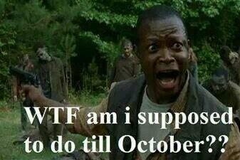 #TWD season 4 is over!!  Only 6 months to go: http://t.co/TVLps8dA6c