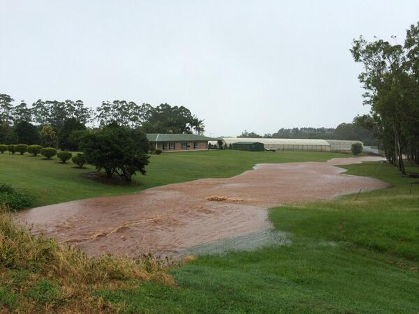 How's this for an overflowing gutter on outskirts of Atherton. All that headed down hill. #TCIta http://t.co/91qfavUwoS