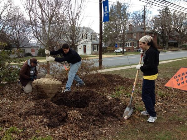 Planting some new trees on campus! #ecvolunteer14 http://t.co/w5ISq3lZ7B
