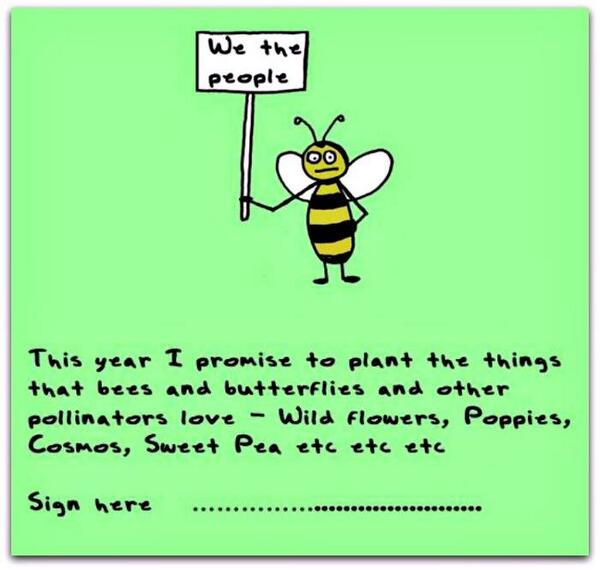 We've got the seeds for your pollinator plants! #seeds #localfood http://t.co/kls8VCnbAK http://t.co/vrUKC0RbCE