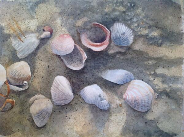 """Seashells,"" by @Blue_Drift, 11"" x 15, "" Watercolor on 300lb. Arches Hot Press. @JamesDayArt #art http://t.co/xM0o1SyMCo"