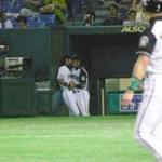 Image for the Tweet beginning: 野球には本当の表と裏がある(笑)