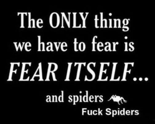The only thing we have to fear is... http://t.co/2vge7YMIDt