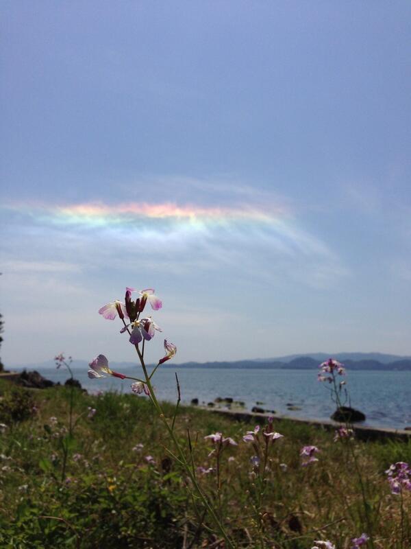 そしてすごく綺麗な彩雲が出てました! pic.twitter.com/AOWy39YxzD