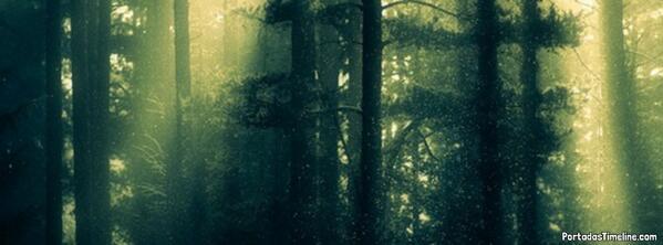 Portadastimeline Com Auf Twitter Nueva Portada Facebook Rayos De Sol Entre Los árboles Http T Co Ir9fk9rk76 Http T Co Jyuipydwpp