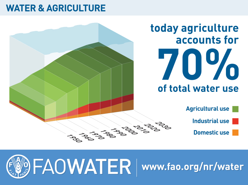 Food And Agriculture Organization Of The United Nations Faostat