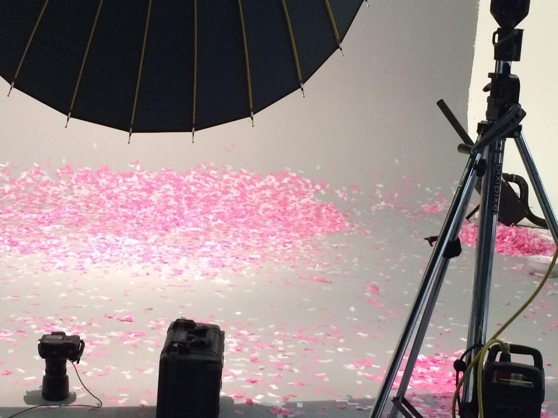 Confetti and chaos at the AW14 @Argos_Online http://t.co/92pu8xYWz4