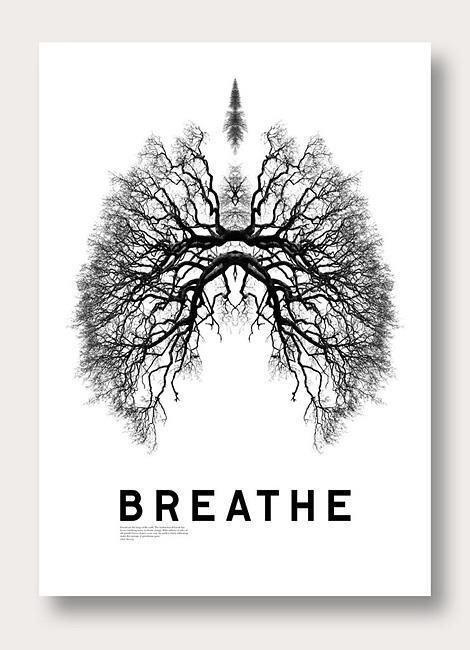 #Breathe http://t.co/T1oUqCyiTY