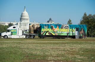 Smithsonian exhibit on wheels at #UCDavisVetMed 4/30! #AnimalConnections http://t.co/swAWIoxwB4 http://t.co/MfF1jeOKZY