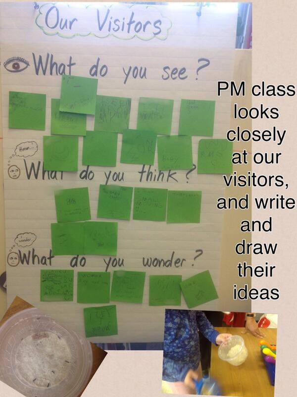 PM class looks closely at our visitors, and write and draw their ideas http://t.co/m7UpCYeho0 http://t.co/oTP4wnuLLZ #lookclosely