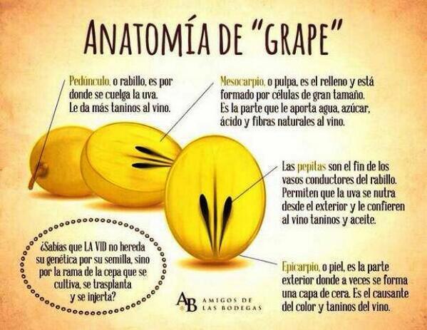 Nacho Sanz Maestre on Twitter: \