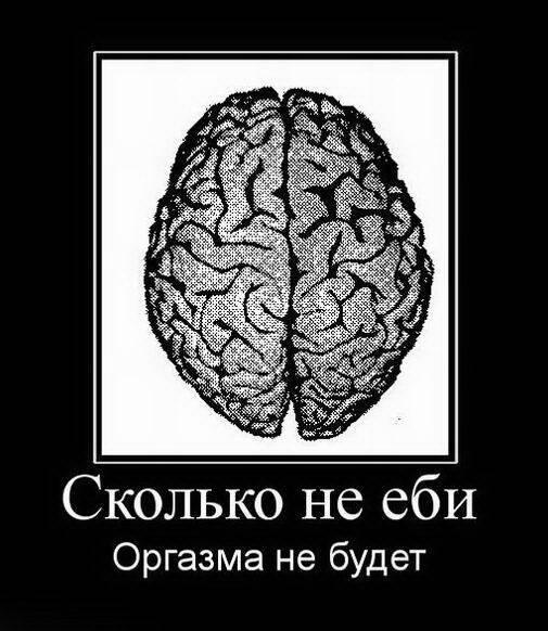 не люби мне мозги картинки батарев биография