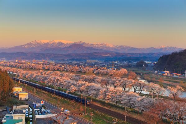 2014-04-13 船岡城址公園 一目千本桜 http://t.co/2dW4StgSvL