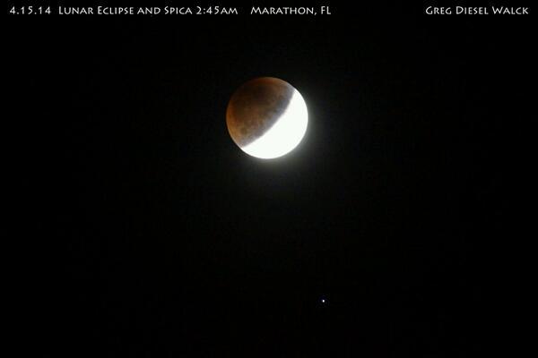 Wow! Nice one Greg! RT @GregDieselPhoto: 245am #LunarEclipse http://t.co/5iSrzAa8Al