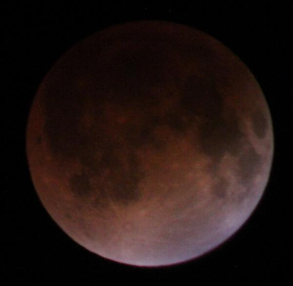 "Here's the eclipsed ""Blood Moon"" from my back yard in Orlando! 1.3 sec exposure, ISO6400 F-8 if u want to try! http://t.co/gqyptqEM8k"