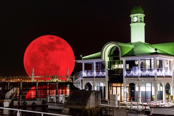 みなさん。先ほどの赤い月は見れましたでしょうか?横浜にてすごい写真を撮ってきました(。+・`ω・´)キリッ pic.twitter.com/lRadBML79G