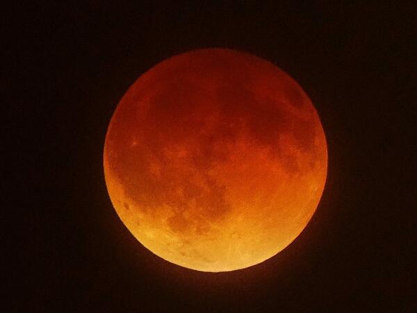 We didn't stay awake to see #BloodMoonEclipse last night. Luckily @npr2way did http://t.co/VBaleaTI4y http://t.co/CoMlnXsspT