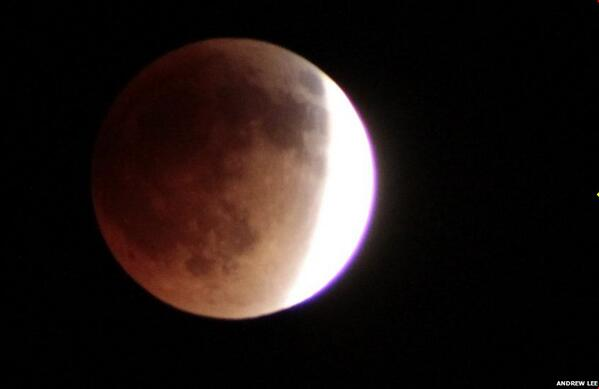 Thanks for your great photos of the Blood moon - check them out here http://t.co/qD7rvM2lBy http://t.co/VuqBsdMgYz