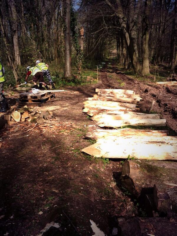 Debarking logs that will then be charred for use as posts in the walls #BrynEryr #MakingHistory http://t.co/NwjoZTnGvP
