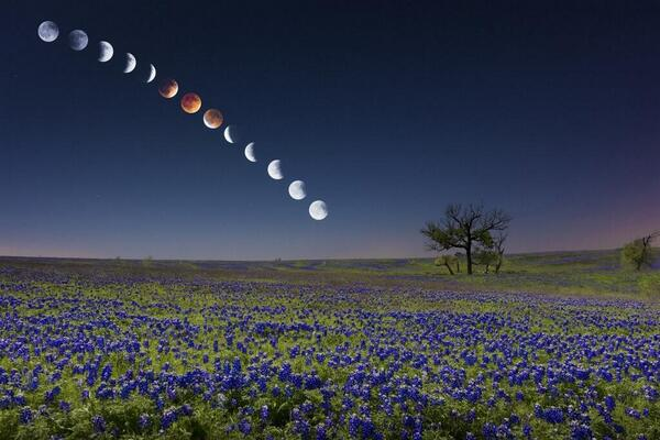 Incredible shot of the eclipse last night http://t.co/wF1YETxe3A
